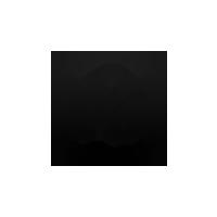 A21 mobile app Logo